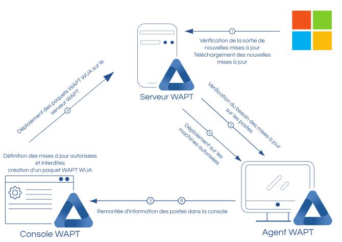 Schéma de fonctionnement de WAPT WUA